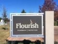 flourish2.jpg